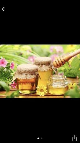 Мёд степной