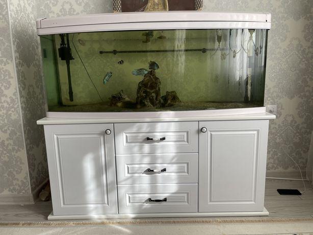 Продам Акварюм 500л с рыбками