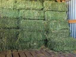 В тюках сено продаем по 25 кг
