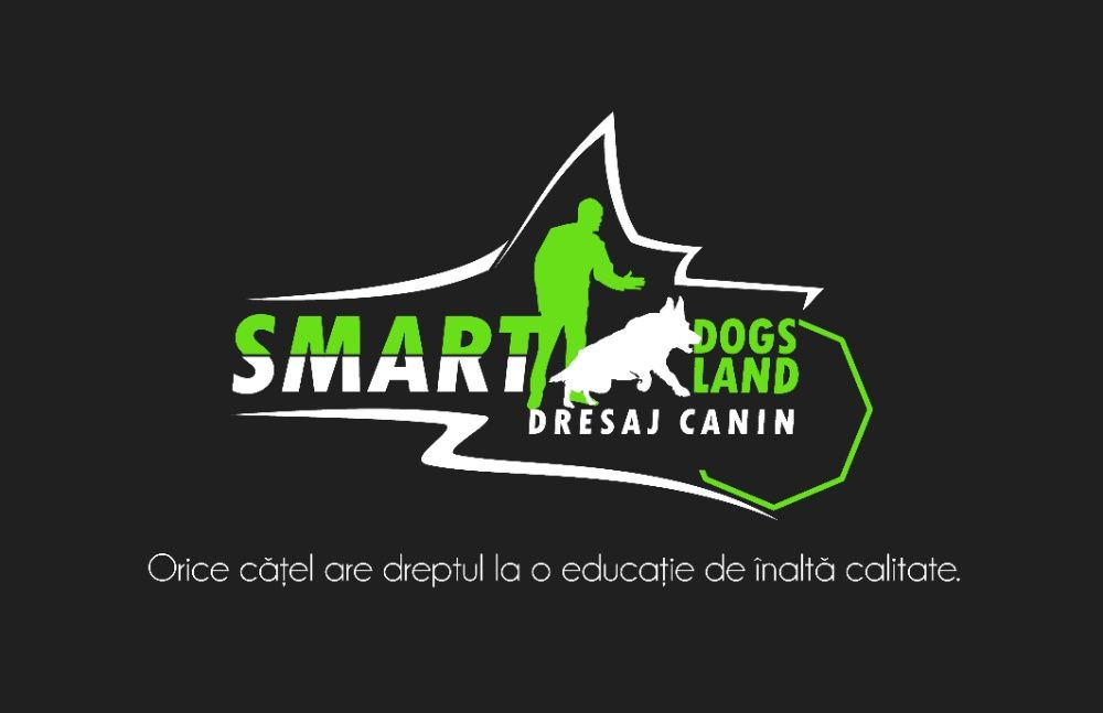 Servicii Dresaj Canin Brasov - Sfantu Gheorghe Brasov - imagine 1