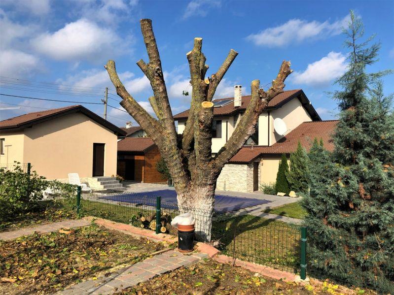 Градиснки услуги , рязане на опасни дървета.Косене на трева гр. Варна - image 1