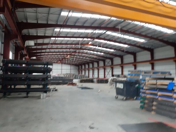 Hale metalice industriale noi variante AUTO