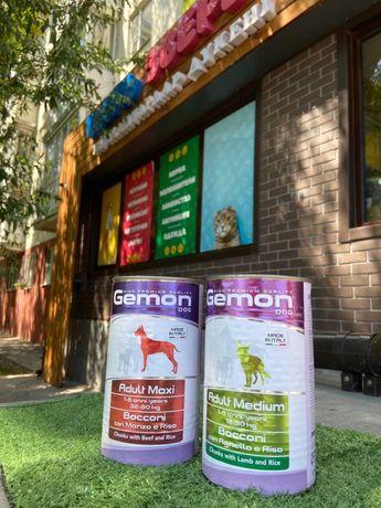 Влажный корм для собак Джемон Gemon