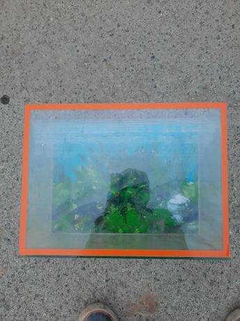 Продам аквариум рыба