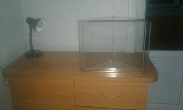 Угловой панорамный аквариум объёмом 13 литров