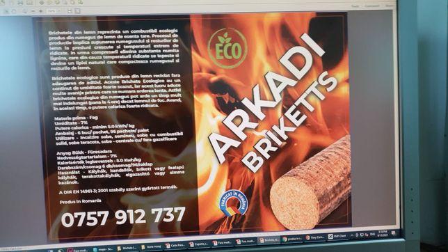 Brichete rumegus fag inlocuitor lemn foc