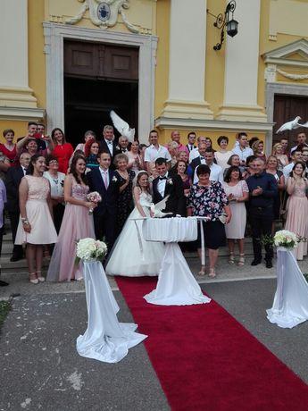 Lanses porumbei albi Oradea