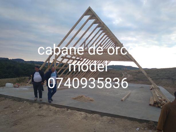 Vand case din lemn  si pe structura metalică