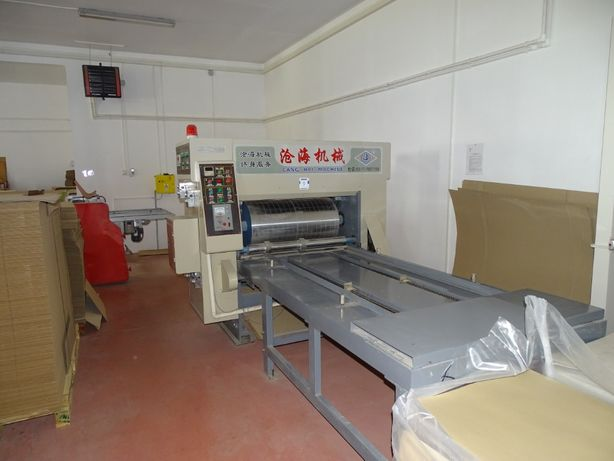 Masina de tiparit flexo 1 culoare model YK 4860-1200