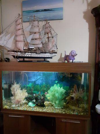 Аквариум 250литров  с рыбками и аксесуарами