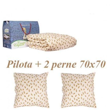 Set Pilota Puf Gasca + 2 Perne Puf Gasca