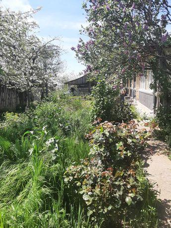 Vand casa, oras Budesti, jud Calarasi(34 km de Bucuresti)