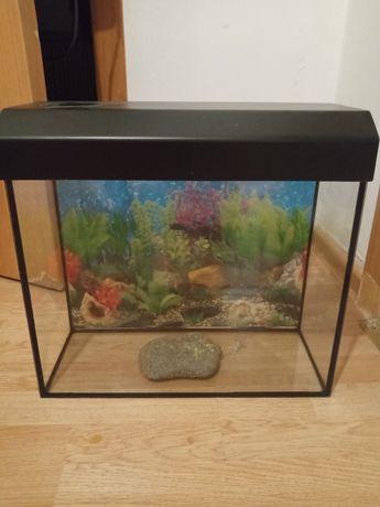 Продам аквариум для рыб или черепах