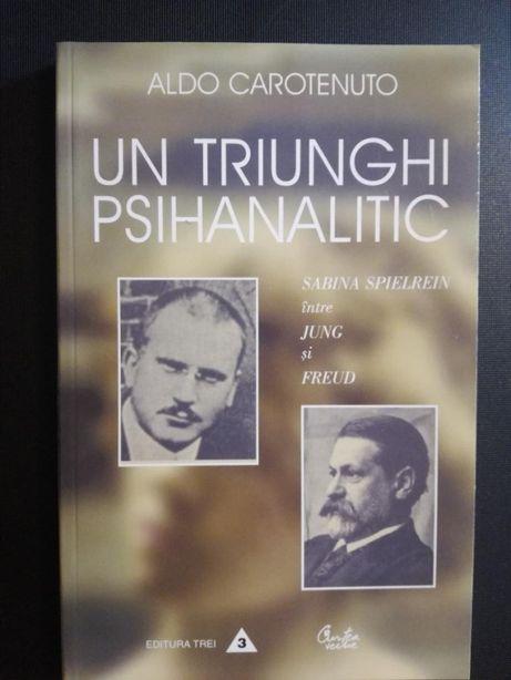 Un triunghi psihanalitic. Sabina Spielrein intre Jung si Freud