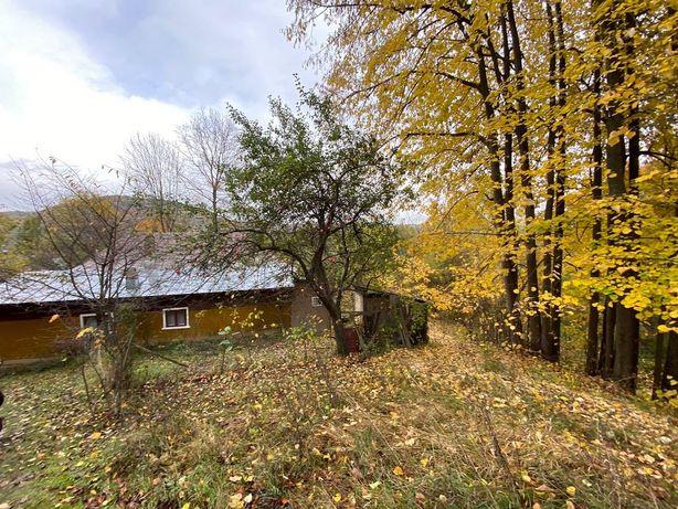 Casa cu teren 5000mp Provita de Sus