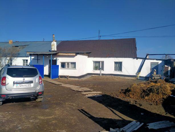 Продаю дом в поселке Кушокы.
