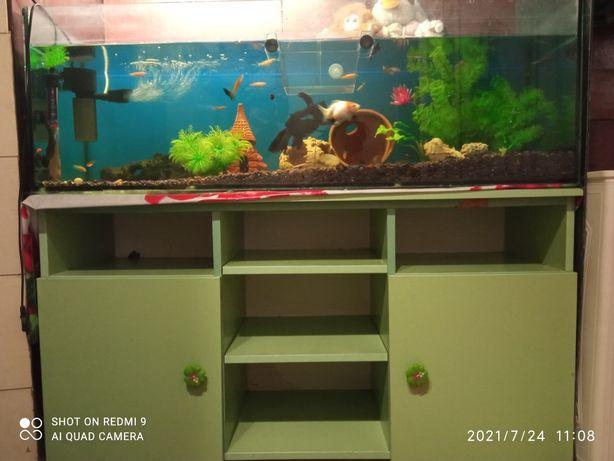 Аквариум 200л+тумба+рыбы+весь декор