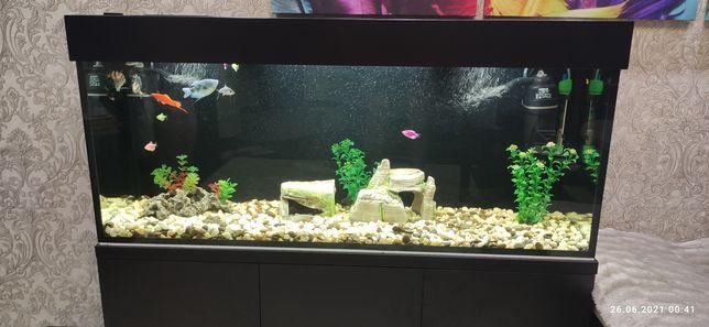Продам аквариум 170 литров вместе с тумбой