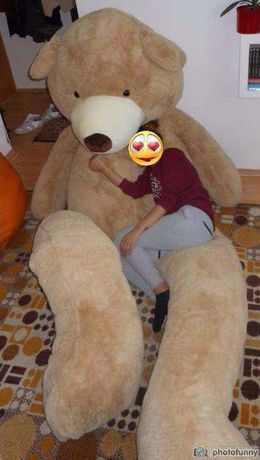 Mega urs de plus urias / mare / gigant /enorm - 3.3-3,4 metri