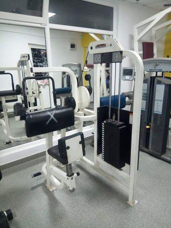 Presa Tricep Life Fitness
