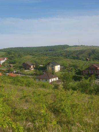 Teren Corunca, Mures