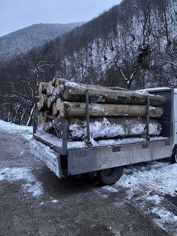 Livram/aducem lemne de foc calitatea 1 in jud MH GJ TM CS