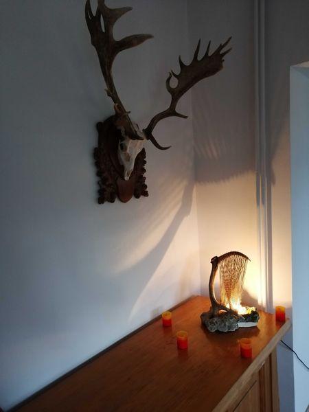Арт нощни лампи с рог от елен гр. Каспичан - image 1
