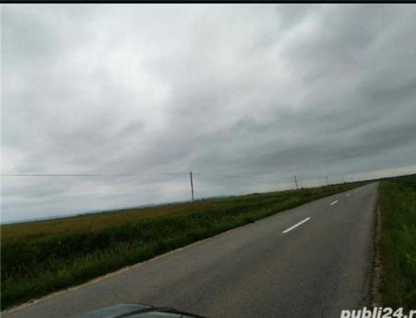 Teren Nojorid 5760 mp, front stradal drumul spre Livada la 900 m de DN