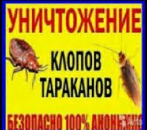 Уничтожение КЛОПОВ, тараканов, Гарантия на 1 год.СЭС! Туманом.