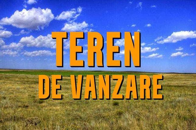 Teren agricol Chisineu Cris/Socodor 4.7 ha