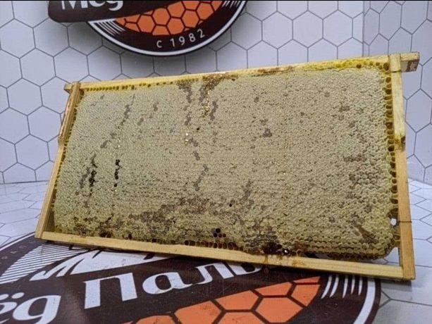 Мёд натуральный оптом