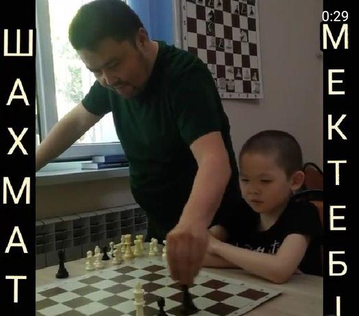 Шахматная школа, шахмат, үйірме, курс, шахматы, шахматы для детей