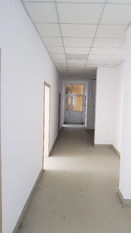 Скобелев/СБА/, 261 кв.м., партер