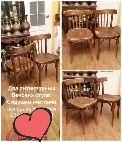 Редчайшие Венские стулья и другие вещи