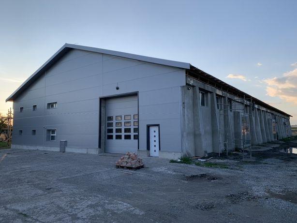 De închiriat hala hale de producție și birouri