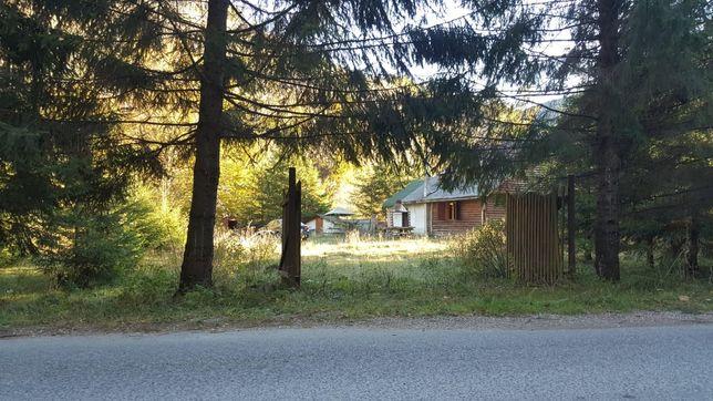 Cabana valea Draganului