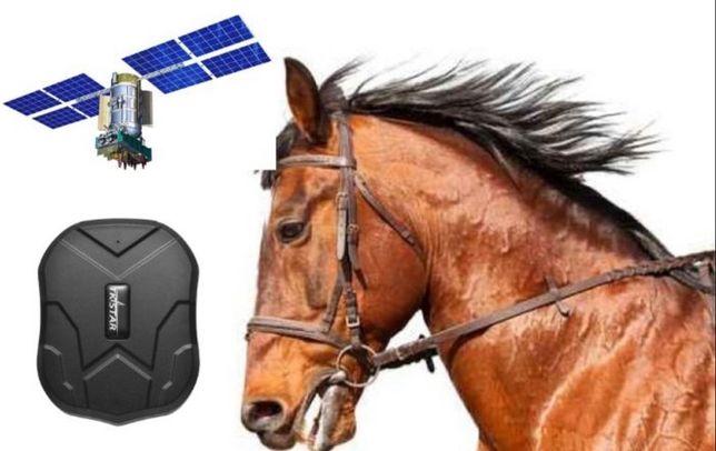 Спутниковый GPS трекер