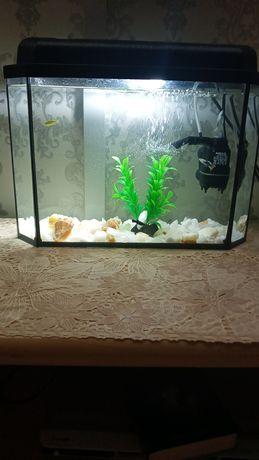 Продам аквариум .
