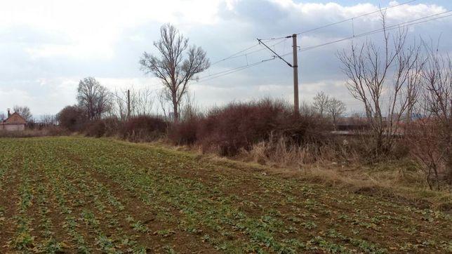Vand teren agricol in Harman
