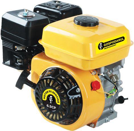 Motor uz general benzina 6.5 CP Gospodarul Profesionist