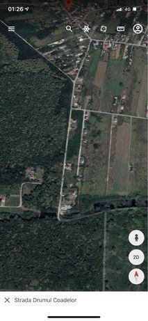 Teren Suberb Snagov-padurea Snagov-gaze la poarta-asfalt-intravilan