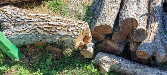 Продавам дървен материал орех