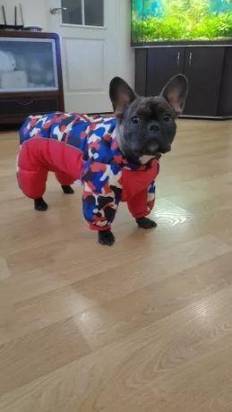 Winter Pet Dog Clothes Super Warm Jacket Cotton Coat Waterproof