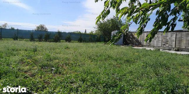 Vanzare teren Darasti-Vlasca