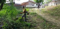 Cosire taiere si defrisare iarba arbusti cu tocare material rezultat
