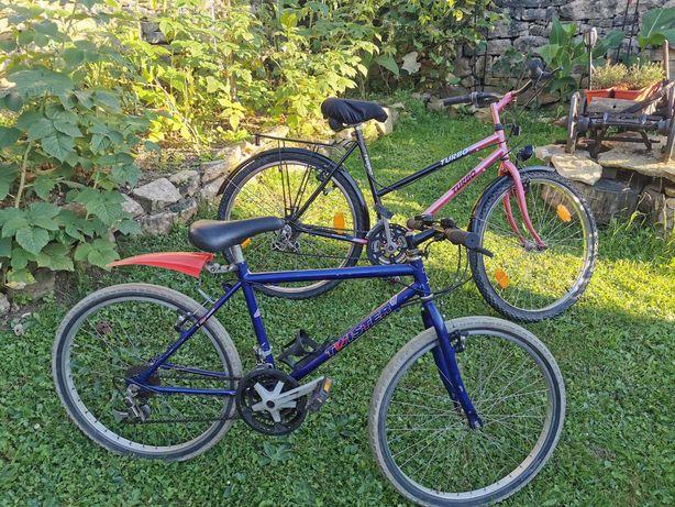 Biciclete Oras mama si copilul