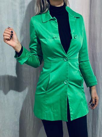 Hainuta dama verde