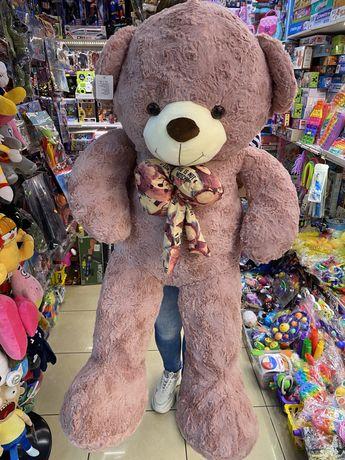 Ursuleti mari de plus, urs gigant