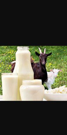 Козье молоко.Ешкинин сутти.