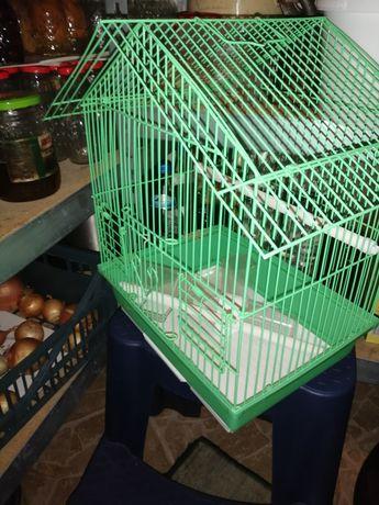 Colivie peruși sau alte păsări